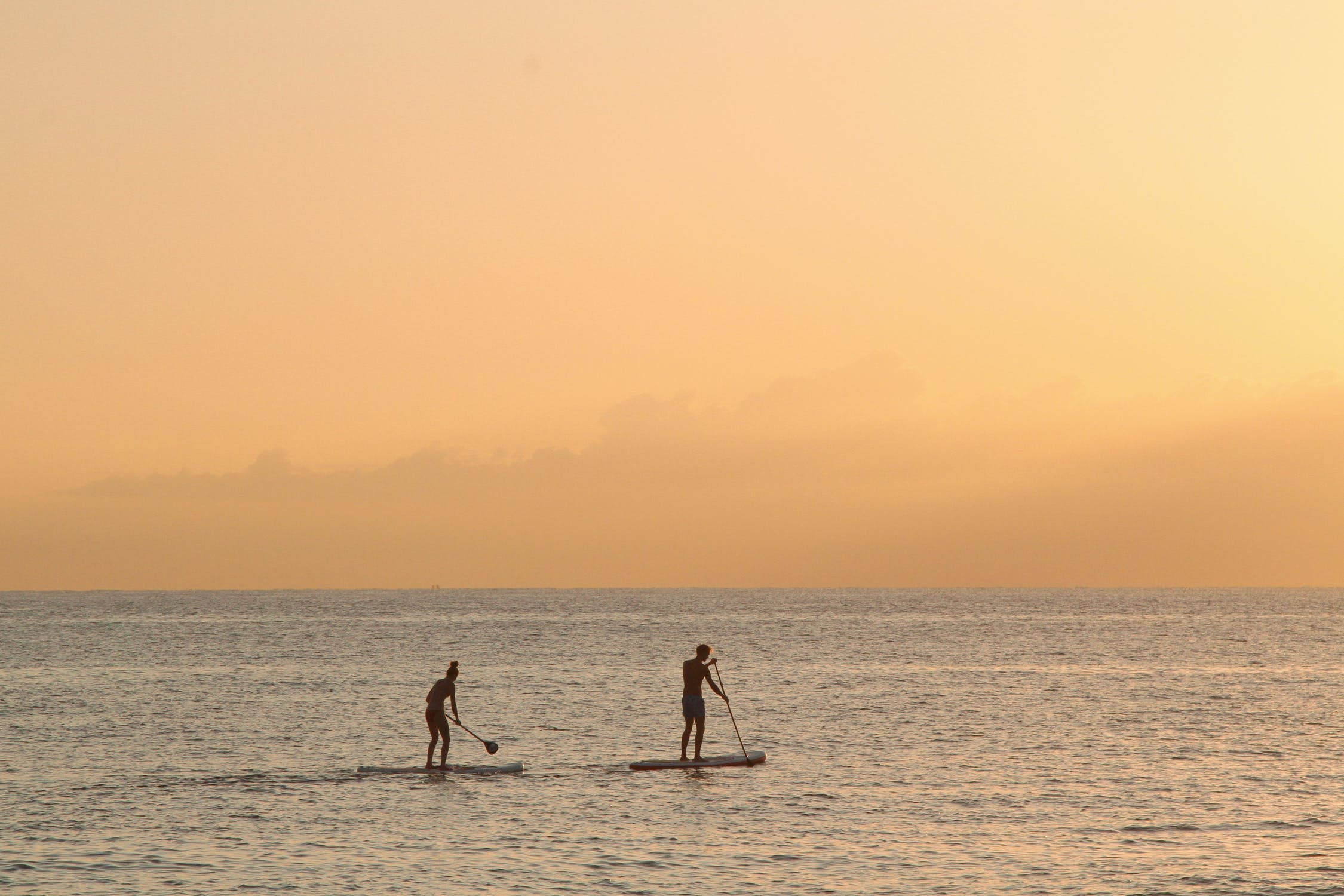 PACK PADDLE SURF